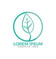 green leaf logo design vector image vector image