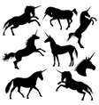 mythical rebellious unicorn black vector image vector image