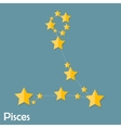 Pisces Zodiac Sign of the Beautiful Bright Stars vector image