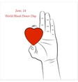 Red Heart in Hand on white background vector image