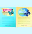 sale spring discount labels web poster butterflies vector image vector image