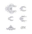 set of decorative flourish ornaments vector image