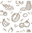 sketch of mix tropical thai fruits seamless vector image vector image