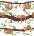 sloth seamless cute little sleepy baanimal vector image vector image