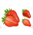 strawberry fresh fruit 3d realistic icon vector image