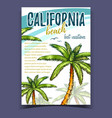 tropical palms california beach banner vector image