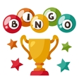 bingo or lottery game with balls vector image vector image