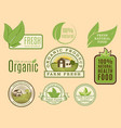 bio farm organic eco healthy food templates and vector image vector image