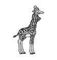 giraffe in scarf and hat sketch vector image vector image
