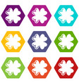 quatrefoil leaf icons set 9 vector image