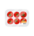 red tomatoes isolated vector image vector image