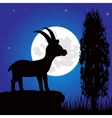 Silhouette mountain sawhorse moon in the night vector image vector image