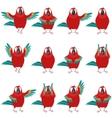 flat set macaw icons vector image