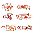 merry christmas bright christmas decoration vector image vector image