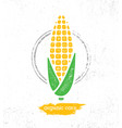 organic sweet corn on the cob creative vector image vector image