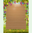grape arch and wooden sign vector image vector image