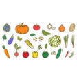 mix vegetables collection cute colorful vector image