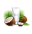 natural and organic coconut cosmetics vector image