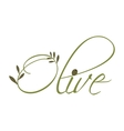 Olive leaves icon Organic and healthy food design vector image vector image