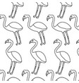 pink flamingo exotic bird decorative seamless vector image vector image