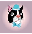 portrait of a dog in a hat vector image vector image