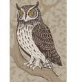 screech-owl vector image vector image