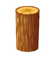 Tree wooden stump with rings cut trees isolated