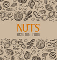 background with nuts and seeds vector image vector image