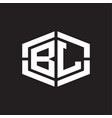 bl logo monogram with hexagon shape and piece vector image vector image