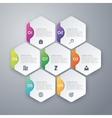 infographics of hexagons vector image