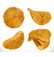 potato chips 3d realistic icon set vector image vector image