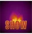 sign lights of a show vector image