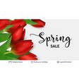 spring season red tulips and sale text vector image vector image