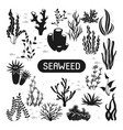 underwater silhouettes seaweed coral and algae vector image vector image