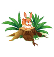 A rabbit above a trunk vector image vector image