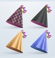 birthday hat set party hat set isolated on a vector image