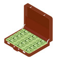 brown briefcase with million dollars vector image vector image