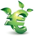 Flourishing euro vector image vector image