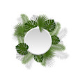 green summer tropical round element with exotic vector image