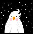funny cute cartoon parrot vector image