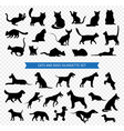 Dogs And Cats Black Silhouette Set vector image vector image