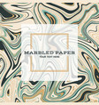 marbled paper background 03 vector image