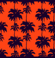 silhouettes palm trees isolated on an vector image vector image