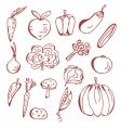 sketch of vegetables vector image
