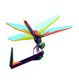 colorful dragon fly vector image vector image