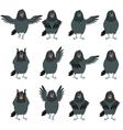 flat icons ravens set vector image vector image
