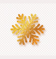golden snowflake with bright glitter isolated on vector image