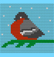 knitted pattern with bullfinches vector image vector image