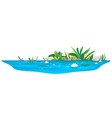 small pond with water lilies vector image vector image