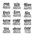 baage markers set monthly milestone cards vector image
